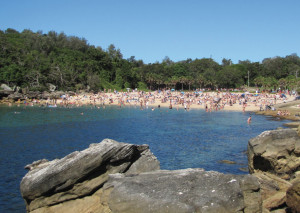 Shelly Beach Manly
