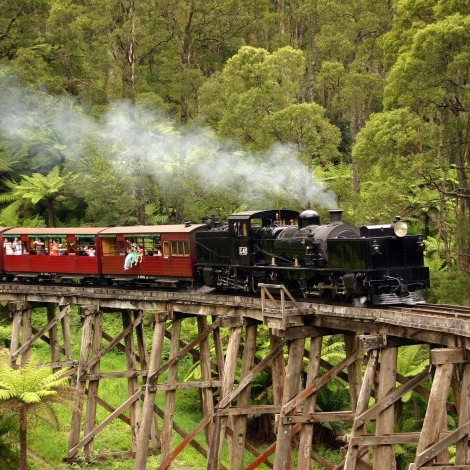 puffing-billy-tour