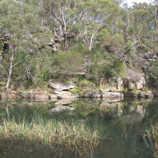 Kangaroo Creek